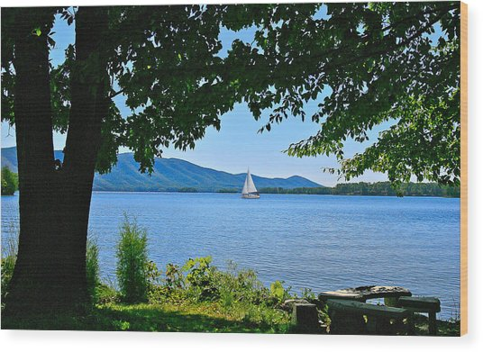 Smith Mountain Lake Sailor Wood Print