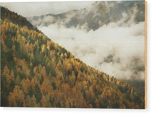 Mountain Landscape Wood Print