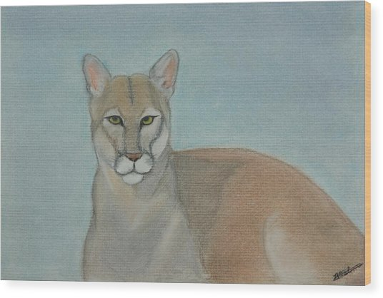 Mountain Lion - Pastels - Color - 8x12 Wood Print by B Nelson