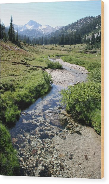 Mountain Meadow And Stream Wood Print
