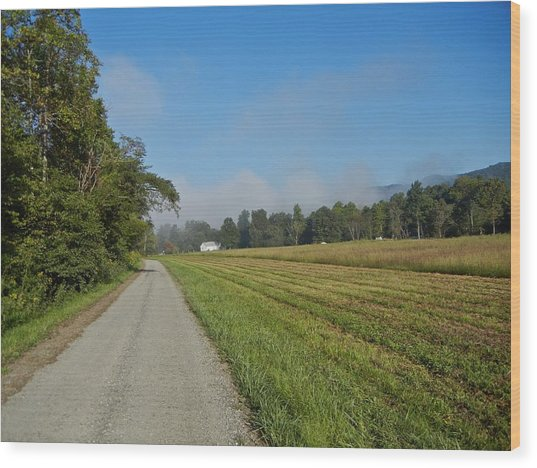 Mountain Mist On Country Road Wood Print by Alan Olansky