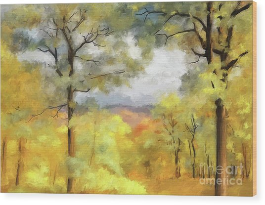 Wood Print featuring the photograph Mountain Morning by Lois Bryan