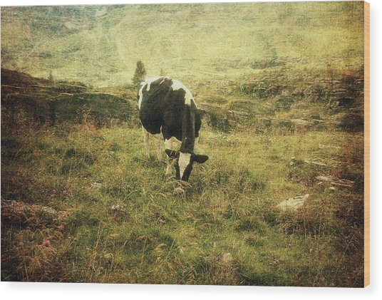 Mountain Pastures  Wood Print