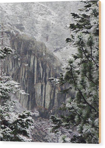 Mountain Pine IIi Wood Print by D Kadah Tanaka