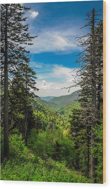 Mountain Pines Wood Print