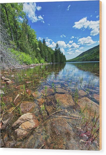 Wood Print featuring the photograph Mountain Pond by David A Lane