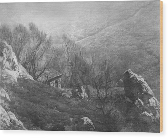 Mountain Scape Wood Print