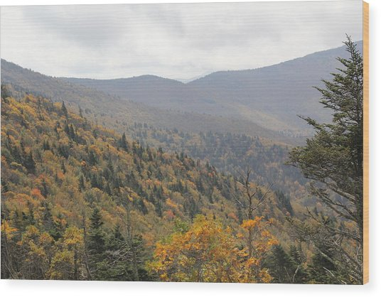 Mountain Side Long View Wood Print