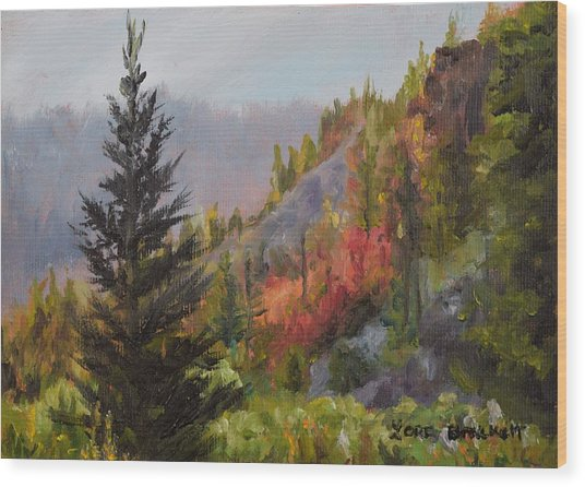 Mountain Slope Fall Wood Print