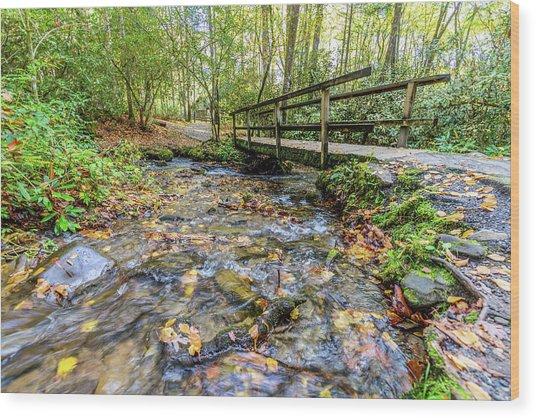 Mountain Stream #2 Wood Print