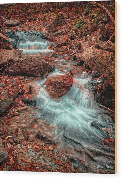 Mountain Stream And Leaves Wood Print