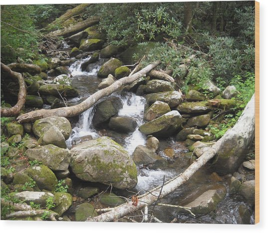 Mountain Stream Wood Print by Christy Verstoep