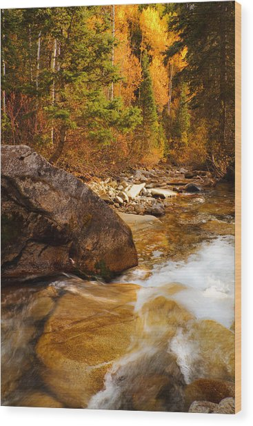 Mountain Stream In Autumn Wood Print by Utah Images