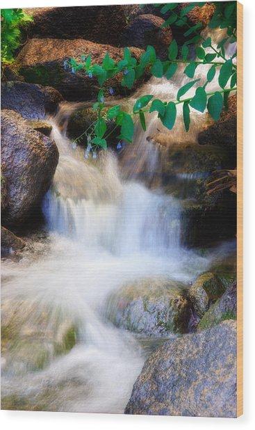 Mountain Stream Wasatch Mts. Utah Wood Print