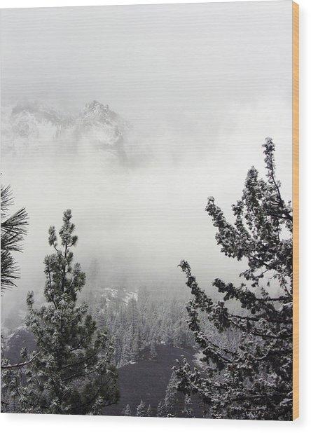 Mountain Top Pine Iv Wood Print by D Kadah Tanaka