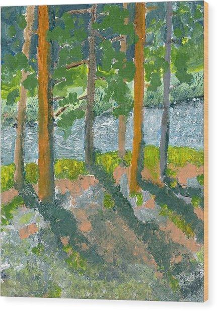 Mountain Valley Wood Print