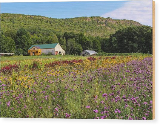 Mountain View Farm Easthampton Wood Print
