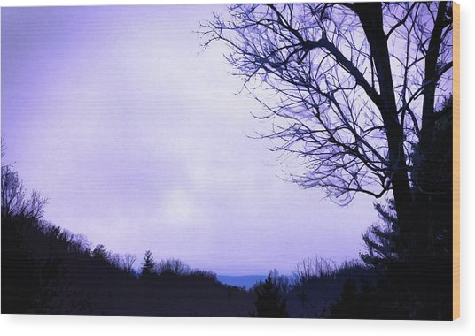 Mountain Vista Wood Print