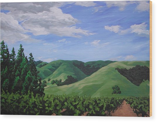 Mountains And  Vineyard Wood Print