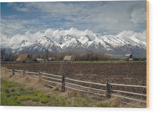 Mountains In Logan Utah Wood Print