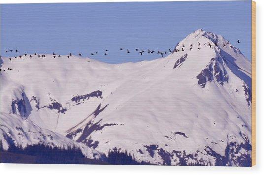 Mountaintop Geese II Wood Print