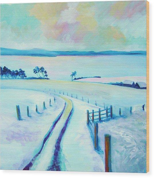 Mountpleasant Winter Wood Print by Stephanie  Maclean