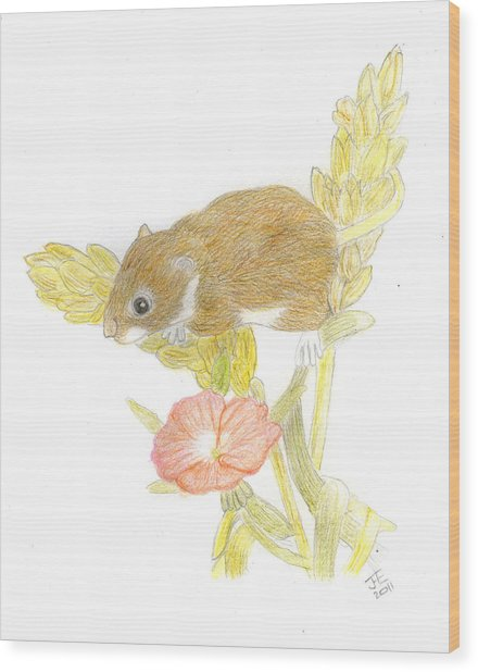 Mouse On The Corn Wood Print by Jacqueline Essex