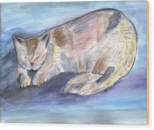 Mprints - Rainbow Cat Wood Print by M  Stuart