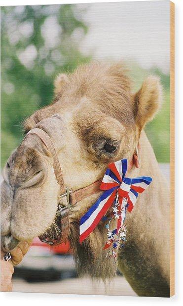 Mr. Camel Wood Print by Cheryl Martin