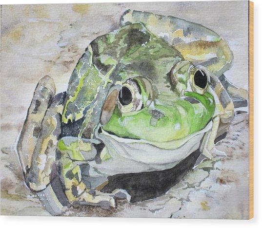 Mr Frog  Wood Print
