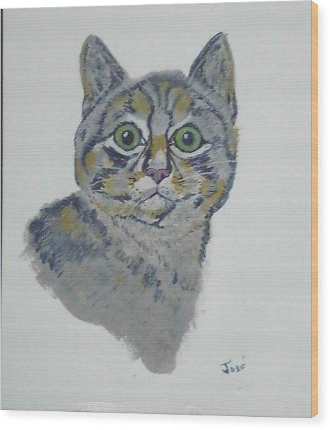 Mr. Tiger Wood Print