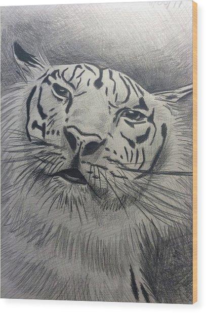 Mr Tiger Wood Print by John DiMare