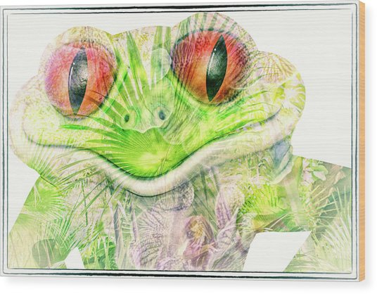Mr Ribbit Wood Print
