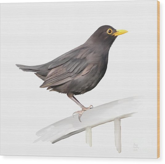 Ms. Blackbird Is Brown Wood Print