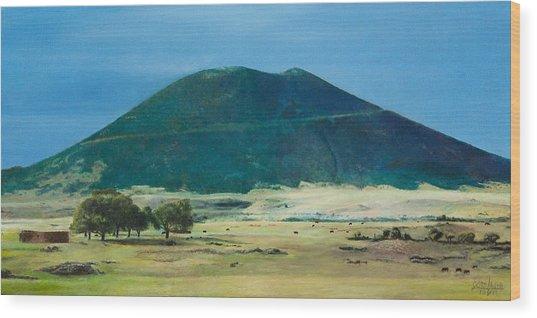 Mt. Capulin In Summer Wood Print