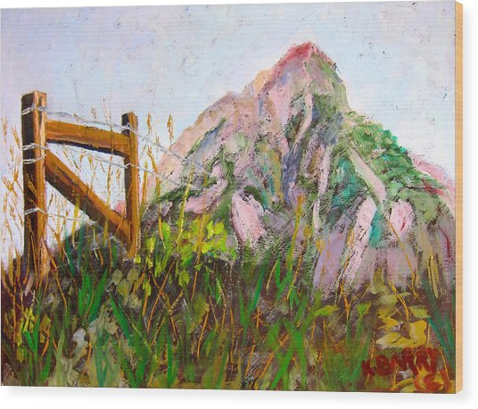 Mt. Crested Butte And Fence Wood Print
