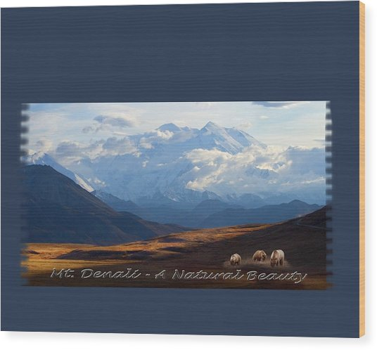 Mt. Denali National Park Wood Print