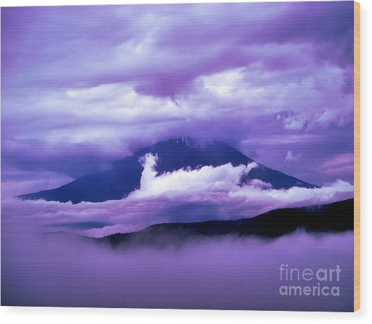 Mt Fuji Wood Print by Yvonne Johnstone
