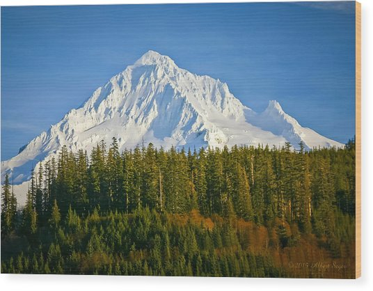 Mt Hood In Winter Wood Print