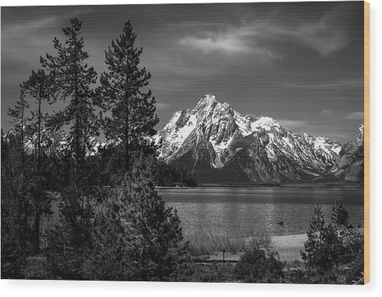 Mt. Moran And Trees Wood Print