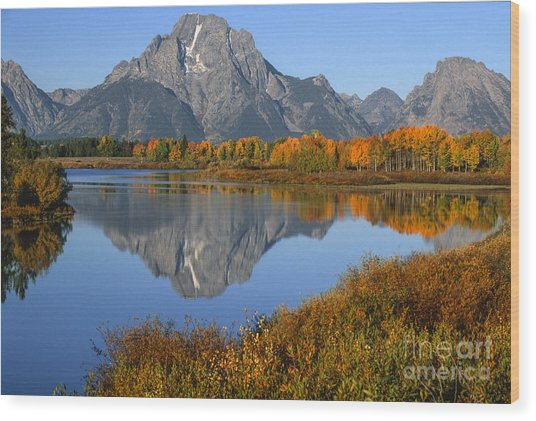 Mt. Moran Fall Reflection  Wood Print