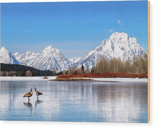 Mt Moran With Geese Wood Print