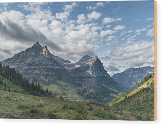 Mt. Oberlin From Logan Pass Wood Print