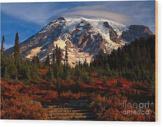 Mt. Rainier Paradise Morning Wood Print