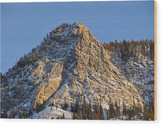 Mt. Royal Wood Print by Tobin Truslow