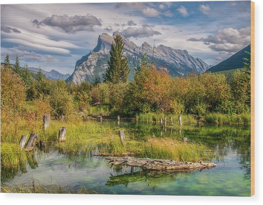 Wood Print featuring the photograph Mt. Rundle 2009 03 by Jim Dollar