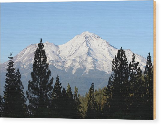 Mt. Shasta - Her Majesty Wood Print