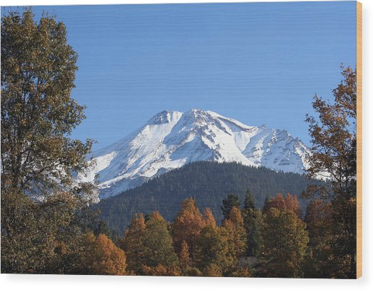 Mt. Shasta Framed Wood Print by Holly Ethan
