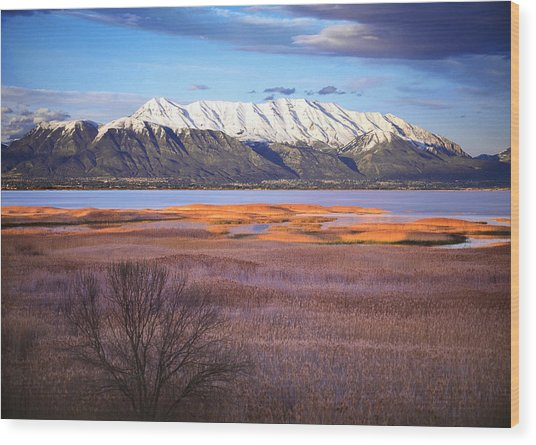 Mt. Timpanogos And Utah Lake Wood Print