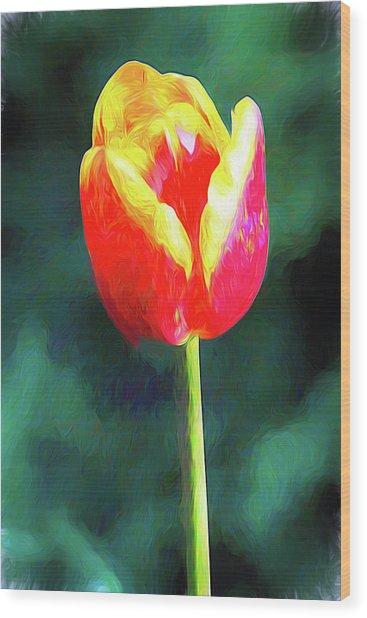 Mt Vernon Tulip Wood Print
